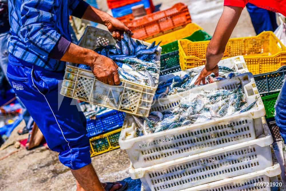 Fisheries fund header 2